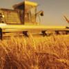Tarımsal Destek Ödemeleri Sorgulama