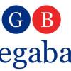 Megabank Nedir? Hedefleri Nelerdir?